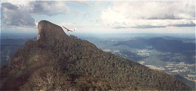 glider soaring Mt Warning