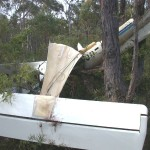 Jabiru Crash Wedderburn NSW